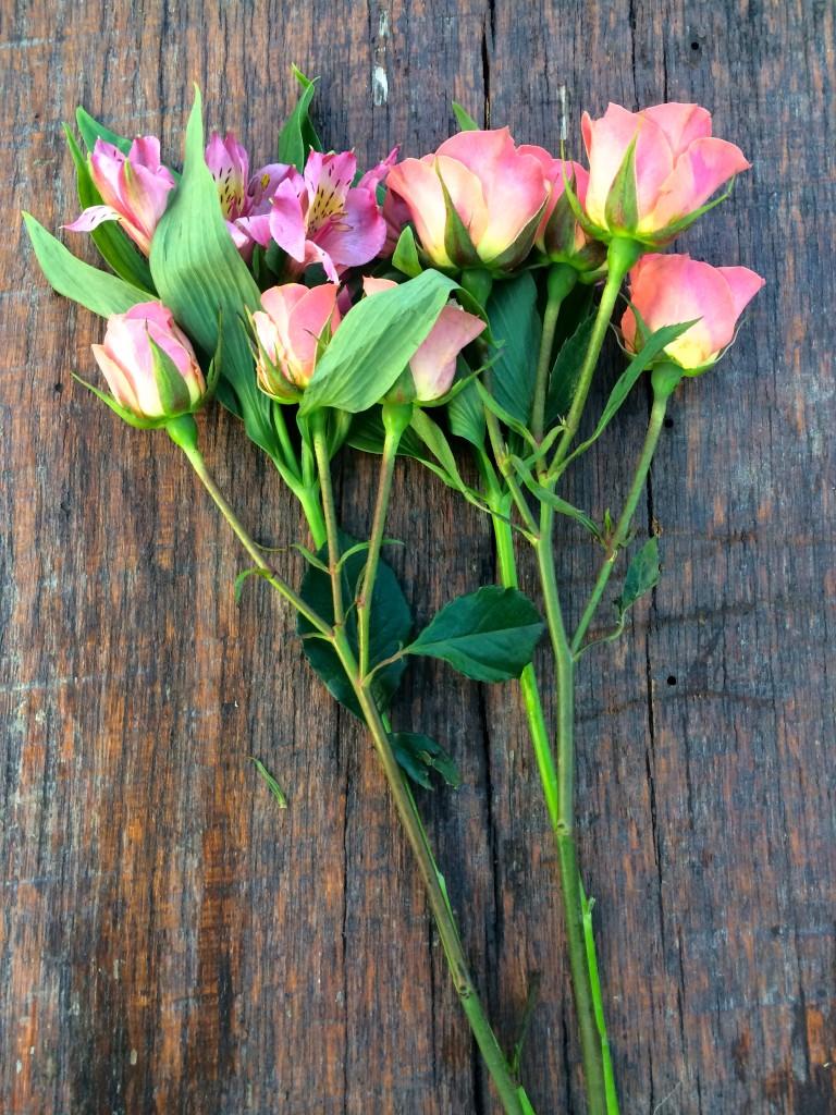 Roses on Bench jpg